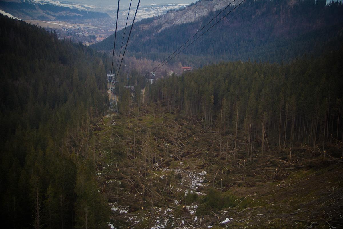 Połamane zapałki czyli efekt bożonarodzeniowej wichury w Tatrach