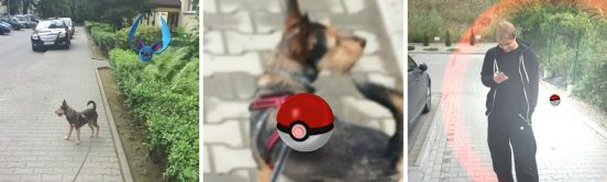 pokemon-go-blog